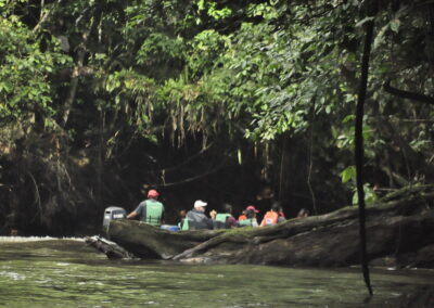AMAZON YASUNI