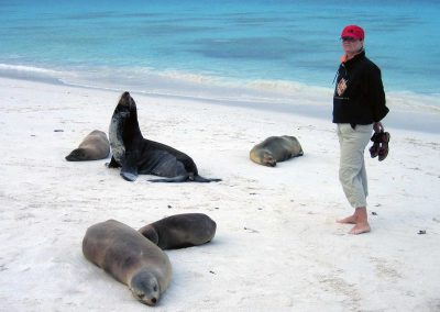 SEE LIONS IN GALAPAGOS