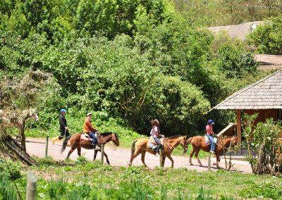 PAPALLACTA HORSE RIDING